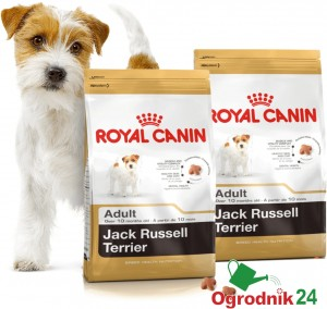 ROYAL CANIN JACK RUSSELL TERRIER ADULT 2x500G GRATIS
