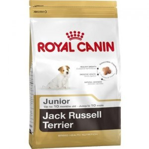 RC19815 ROYAL CANIN JACK RUSSELL TERRIER JUNIOR DLA PSA 1,5KG