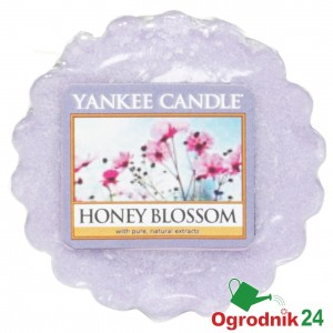 YANKEE CANDLE HONEY BLOSSOM WOSK ŚWIECA KOMINEK