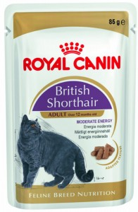 Royal Canin british shorthair adult 85g saszetka kot brytyjczyk