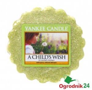 YANKEE CANDLE CHILD'S WISH WOSK ŚWIECA KOMINEK