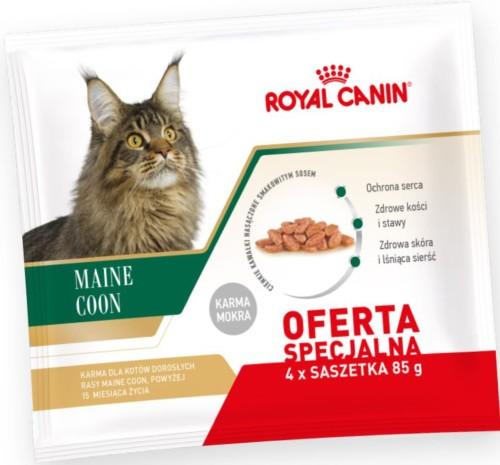 royal canin multipak maine coon adult 4x85g mokra karma. Black Bedroom Furniture Sets. Home Design Ideas