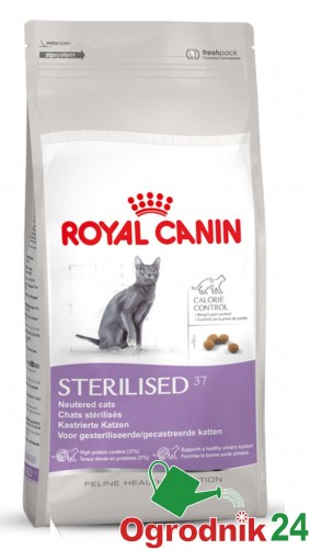 royal canin 18354 sterilised 37 dla kota 10kg w wa. Black Bedroom Furniture Sets. Home Design Ideas