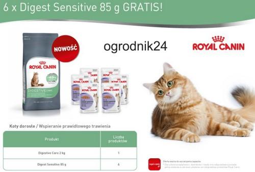 royal canin 22370 digestive care dla kota 2kg 6sasz w wa. Black Bedroom Furniture Sets. Home Design Ideas