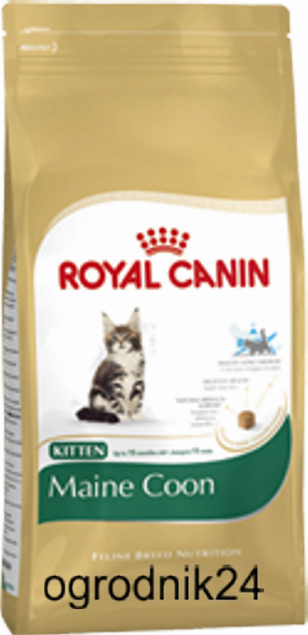 royal canin maine coon kitten 400g 400g w wa. Black Bedroom Furniture Sets. Home Design Ideas
