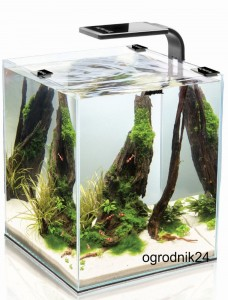 AKWARIUM 20L SHRIMP SET SMART BLACK 25X25X30CM W-WA